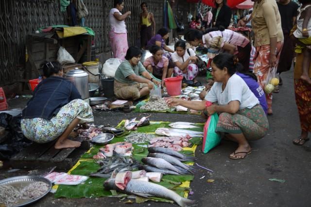 Glandouille en Birmanie