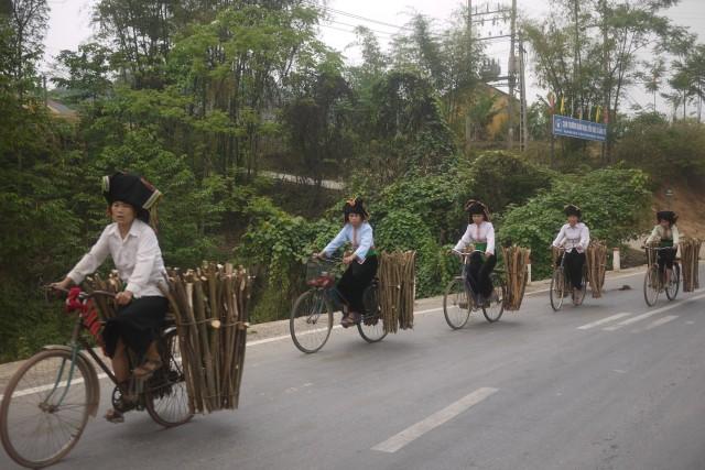 Vietnamiennes
