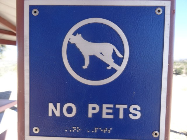 Imagine the happiness of a blind guy and his dog who end up finding this sign