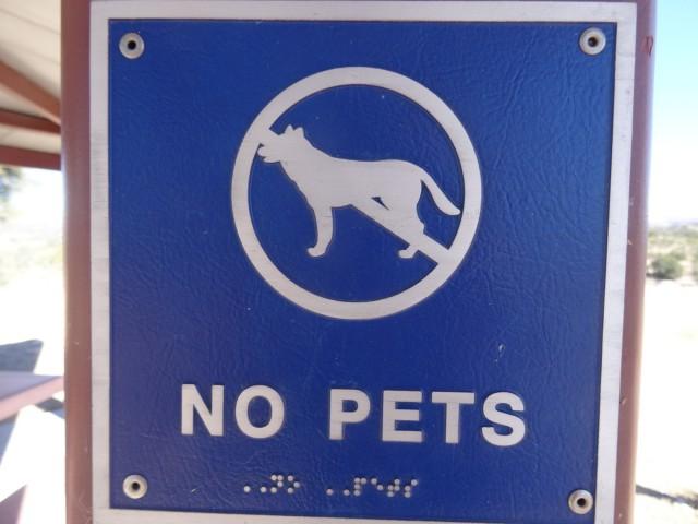 Imaginez le bonheur d'un aveugle et son chien qui arrive à trouver ce panneau!
